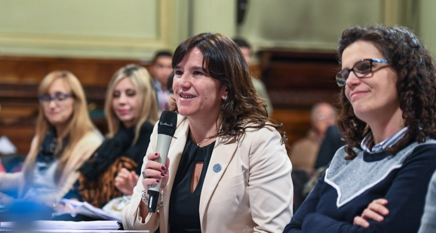 Debate Proyecto Aborto: Médicos riojanos expusieron en el Senado