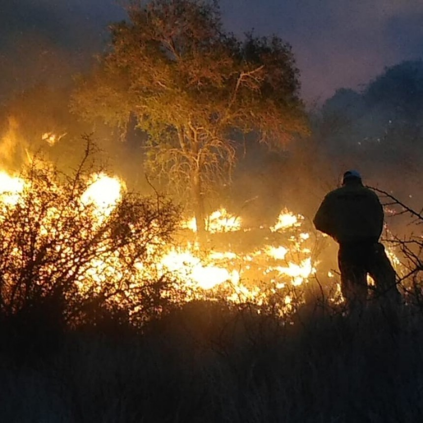Defensa Civil trabajó hasta la madrugada para controlar incendio en zona rural de Capital