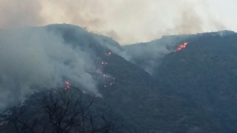 Preocupa incendio forestal en el cordón del Famatina