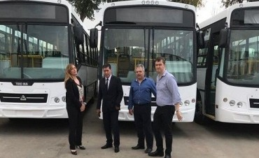 Transporte Publico: El gobierno incorporará 20 unidades nuevas